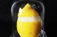 Comment faire un citron givre