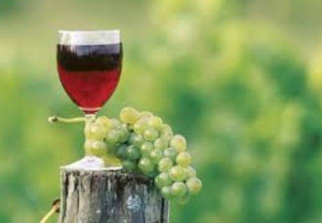 Cave à vin en ligne