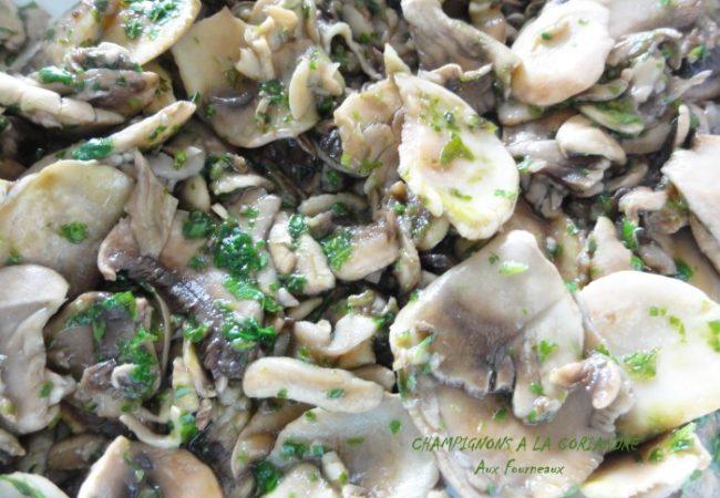 Plancha de champignons à la coriandre
