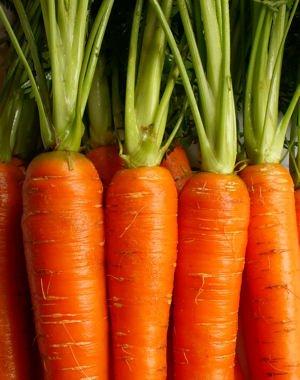 que manger légume en  avril