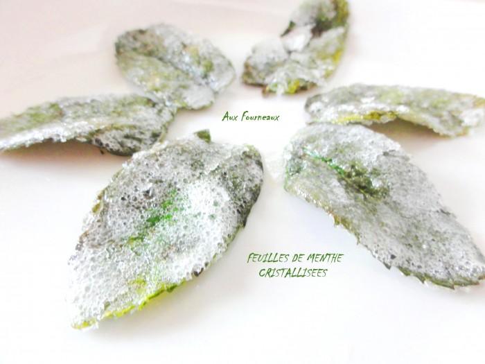 feuilles de menthe cristallisées