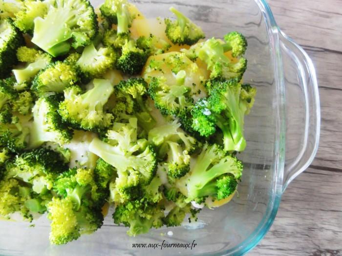 Gratin de brocolis sauce bechamel