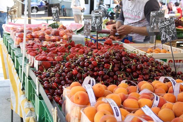 abricot variete recette conservation