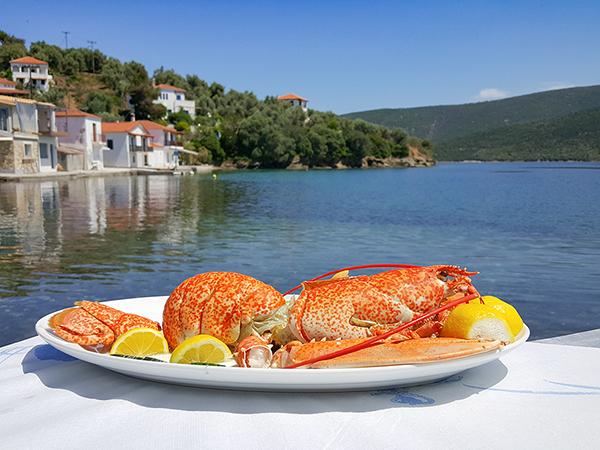 Homard - Spécialités gastronomie grecque - île de Trikeri au Mont Pélion