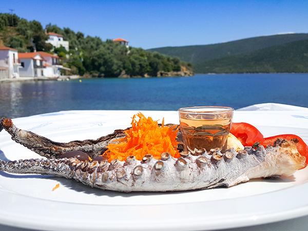 Octopus spécialité gastronomique grècque