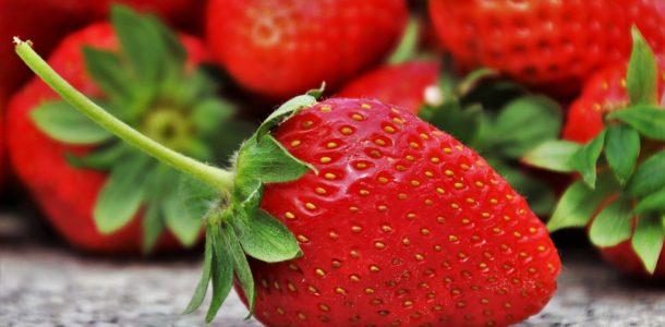 recettes succulentes à faire avec des fraises
