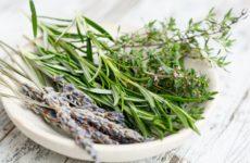 Le top 10 des aliments riche en fer