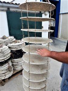 Charente Maritime Ostréiculture et dégustation huître