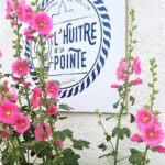 Où déguster des huîtres en Charente-Maritime