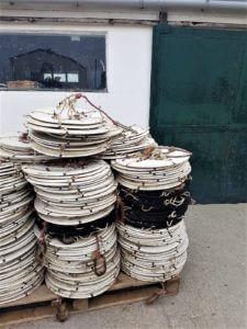 Ostréiculture et dégustation huître charente maritime
